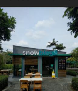 snowbing trinoma